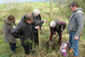 Peace Forest Planting in Kavanagh Country